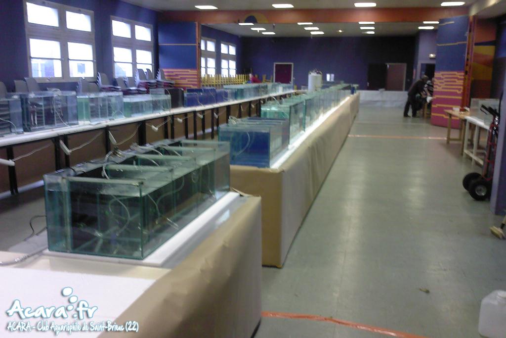 Préparation de la salle pour la bourse briochine 2010